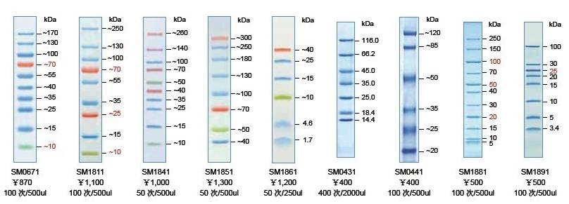 Fermentas 蛋白marker 蛋白分子量 金 标准
